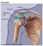 This is a shoulder but you get the idea.