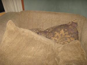 Leo-less pillows :-(
