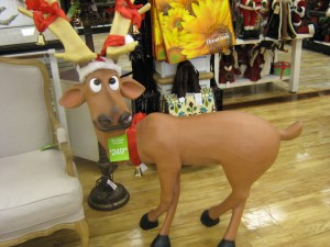 I love this guy at Home Goods but not for the price.